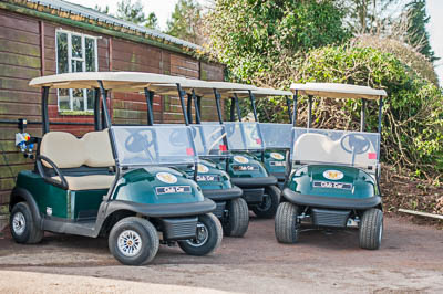 The Buggies Have Arrived
