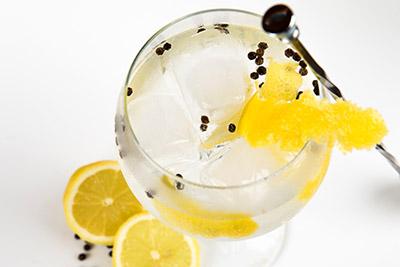 Gin Tasting – Friday 20th April